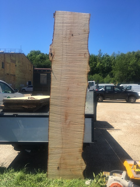 Large Lime Planks - British Timber Supplies in East Sussex TN38