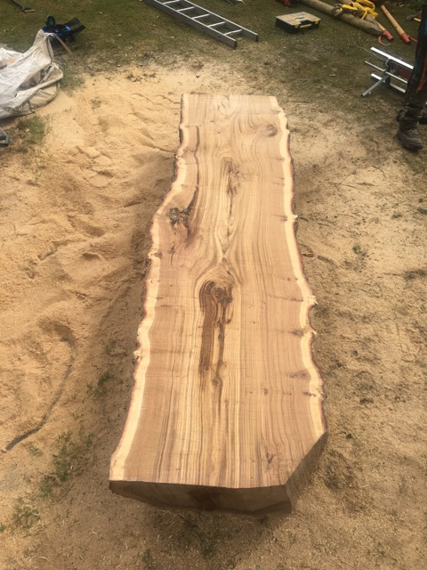 Huge Oak slabs 3