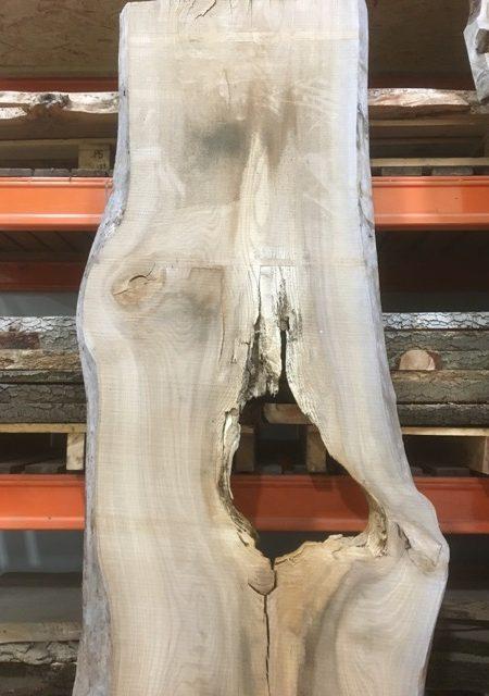 ELM 015 timber plank
