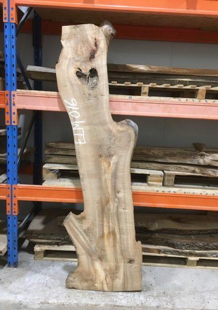 ELM 016 timber