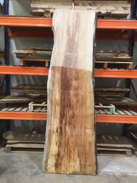 Beech 014 timber plank in stock for sale in East Sussex
