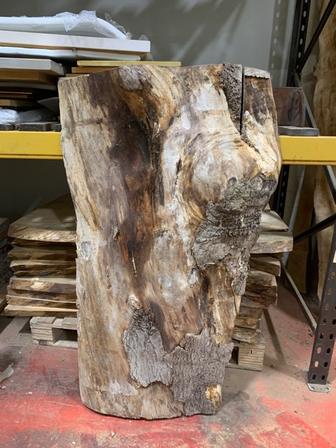Spalted Beech2