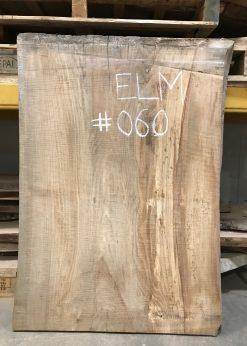Elm 060